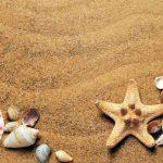 Tag am Meer genießen